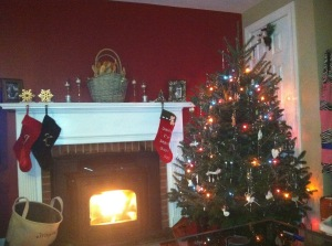 Our fireplace with pellet stove...pre-children when we could have a tree that wasn't guarded by a baby gate.