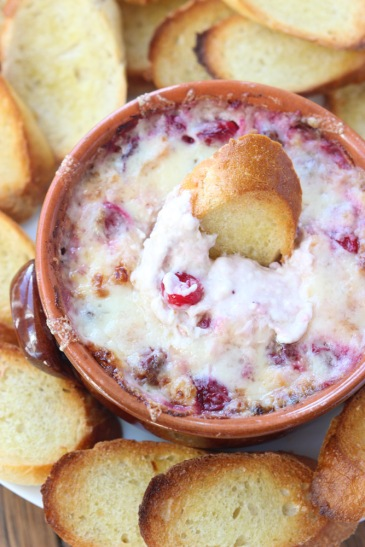 White-Cheddar-and-Cranberry-Dip-1
